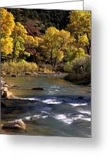 Flowing Through Zion National Park Greeting Card