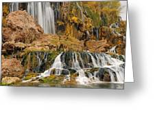 Flowing To The Snake Greeting Card