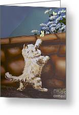 Fluff And Flutter Greeting Card