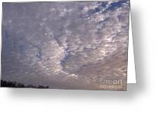 Fluff In The Sky Greeting Card