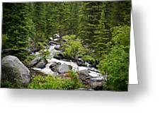 Fluid Motion - Crazy Woman Canyon - Crazy Woman Creek - Johnson County - Wyoming Greeting Card