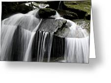 Fluke Fall Greeting Card