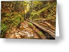 Flume Gorge Landscape Greeting Card