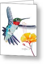Da177 Flutter By Daniel Adams Greeting Card