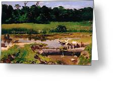 Fluvial Landscape Greeting Card