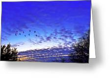 Fly By At Sunset Greeting Card