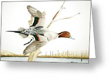 Fly-by Greeting Card