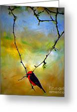 Fly Catcher In Heart Shaped Branch Greeting Card