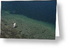Fly Fishing In Alpine Lake Greeting Card