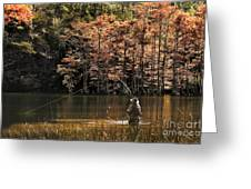 Fly Fishing  Greeting Card by Tamyra Ayles