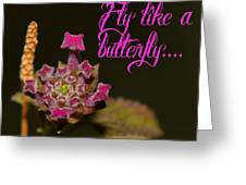Fly Like A Butterfly Greeting Card by Old Pueblo Photography