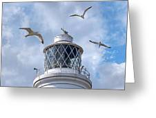 Fly Past - Seagulls Round Southwold Lighthouse - Square Greeting Card