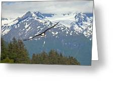 Flying Amongst The Mountains Greeting Card