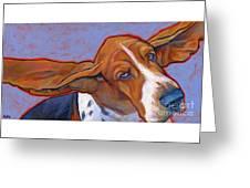 Flying Basset Hound Greeting Card