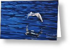 Flying Bird Greeting Card