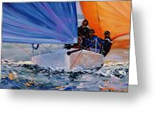 Flying Colors Two Greeting Card by Laura Lee Zanghetti