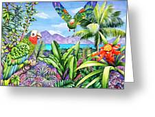 Flying Colours Greeting Card by Carolyn Steele