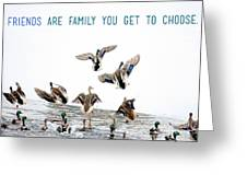Flying Ducks And A Friends Quote Greeting Card