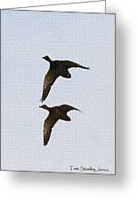 Flying Fast Ducks Greeting Card