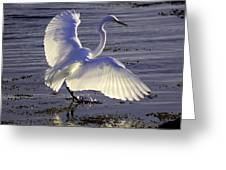 Flying In V1 Greeting Card