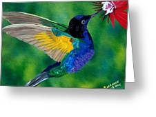 Flying Jewel Greeting Card