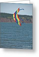Flying Kite Greeting Card
