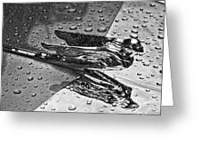 Flying Lady Hood Ornament In B And W Greeting Card