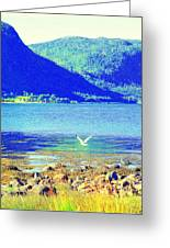 Seagull Flying Low, Mountains Standing Tall  Greeting Card