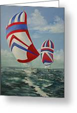 Flying The Colors Greeting Card