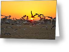 Flying To The Rising Sun Greeting Card
