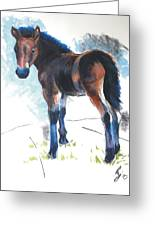 Foal Painting Greeting Card