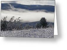 Fog And Frost Greeting Card