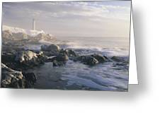 Fog And Rocky Shoreline In Winter With Greeting Card