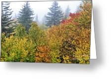 Fog Fall Day Greeting Card