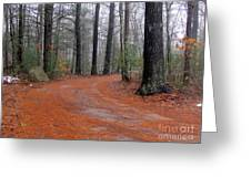 Fog In The Pines Greeting Card