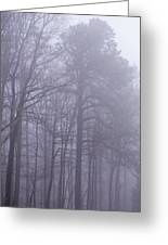 Fog In The Smoky Mountains Greeting Card