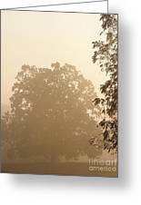 Fog Over Countryside Greeting Card