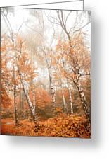 Foggy Autumn Aspens Greeting Card