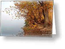 Foggy Autumn Riverbank Greeting Card