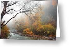 Foggy Autumn Greeting Card