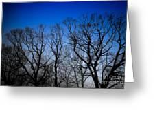 Foggy Blue Morning Greeting Card