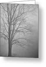 Foggy Days Greeting Card