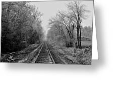 Foggy Ending In Black And White Greeting Card
