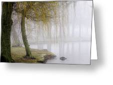 Foggy Lake Morning Greeting Card