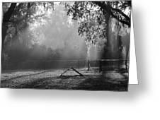 Foggy Morn At Dog Park Greeting Card