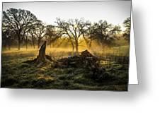Foggy Morning 3 Greeting Card