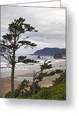 Foggy Morning At Tolovana Beach Oregon 2 Greeting Card