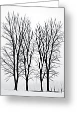 Foggy Morning Landscape - Fractalius  Greeting Card by Steve Ohlsen