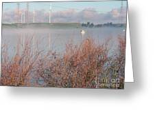 Foggy Morning On The Sacramento River Greeting Card