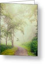 Foggy Path - Blue Ridge Parkway Greeting Card